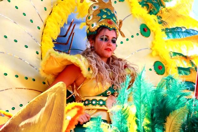 Flores do Mindelo 2011