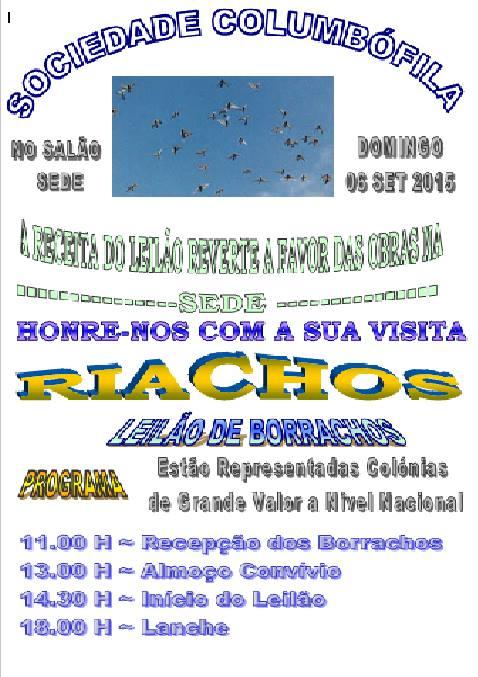 Leilão Riachos.jpg