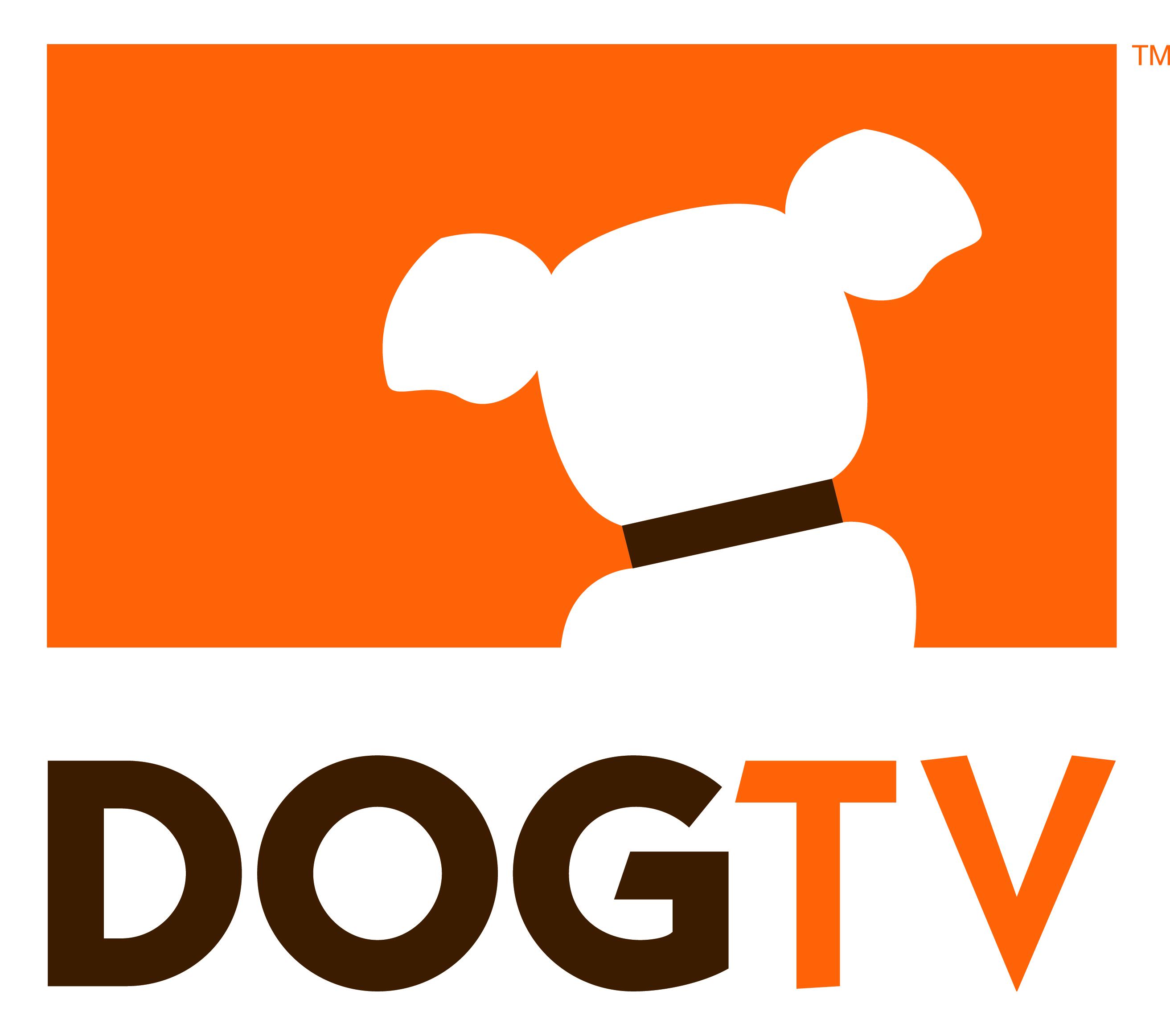 dog-tv.jpg